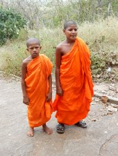 Dambulla Young Monks